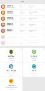 Rekorde Laufen